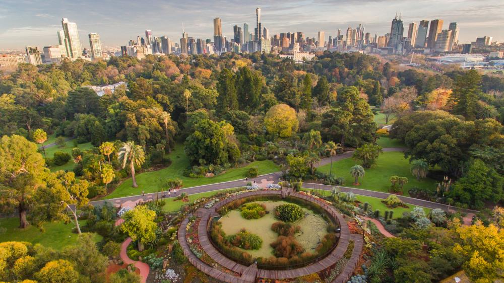 15 mins walk to Royal Botanic Gardens Victoria