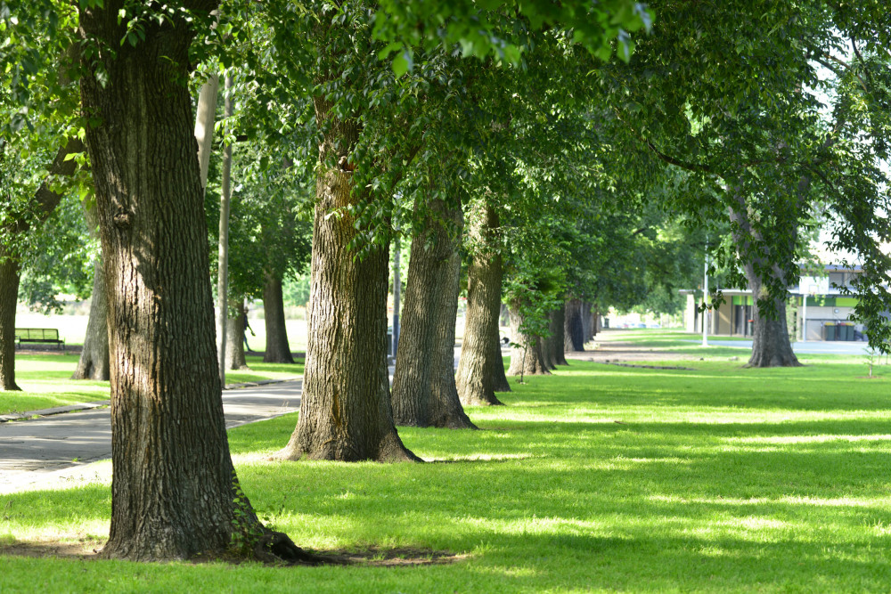 5 mins drive to Edinburgh Gardens
