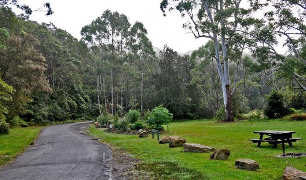 10 mins walk to Lane Cove National Park
