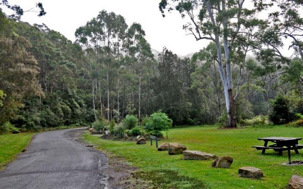 4 mins drive to Lane Cove National Park